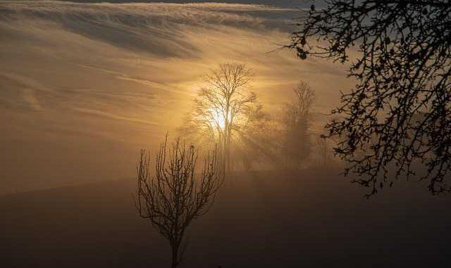 Météo Toulouse. 16 degrés et du soleil mardi après midi