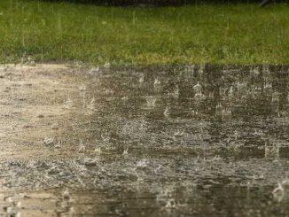 Météo Toulouse. vers une semaine pluvieuse
