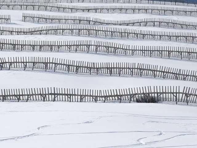 Neige, Avalanches, 14 départements en alerte météo vigilance orange