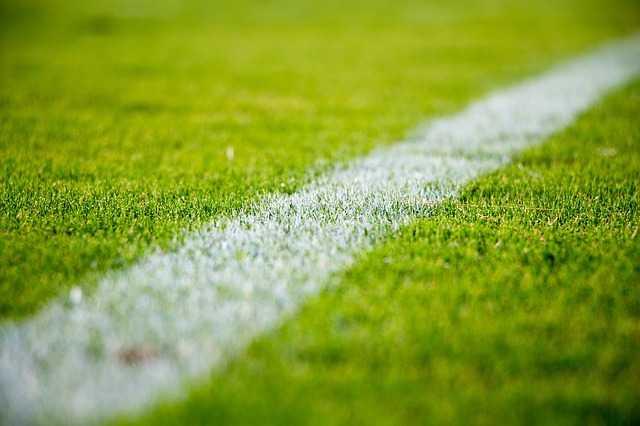 Toulouse éliminé en huitièmes de finale de la coupe de France
