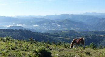 Tremblement de terre dans les Pyrénées