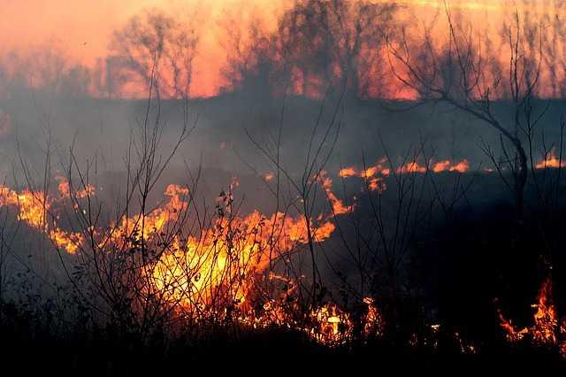 4 hectares ravagés par des incendies dans le Lot