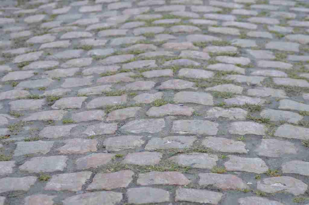 Le TFC et le Stade Toulousain jouent dimanche en plein Paris Roubaix