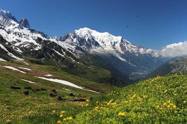 Le Mont Blanc une apothéose pour tout amateur de montagne