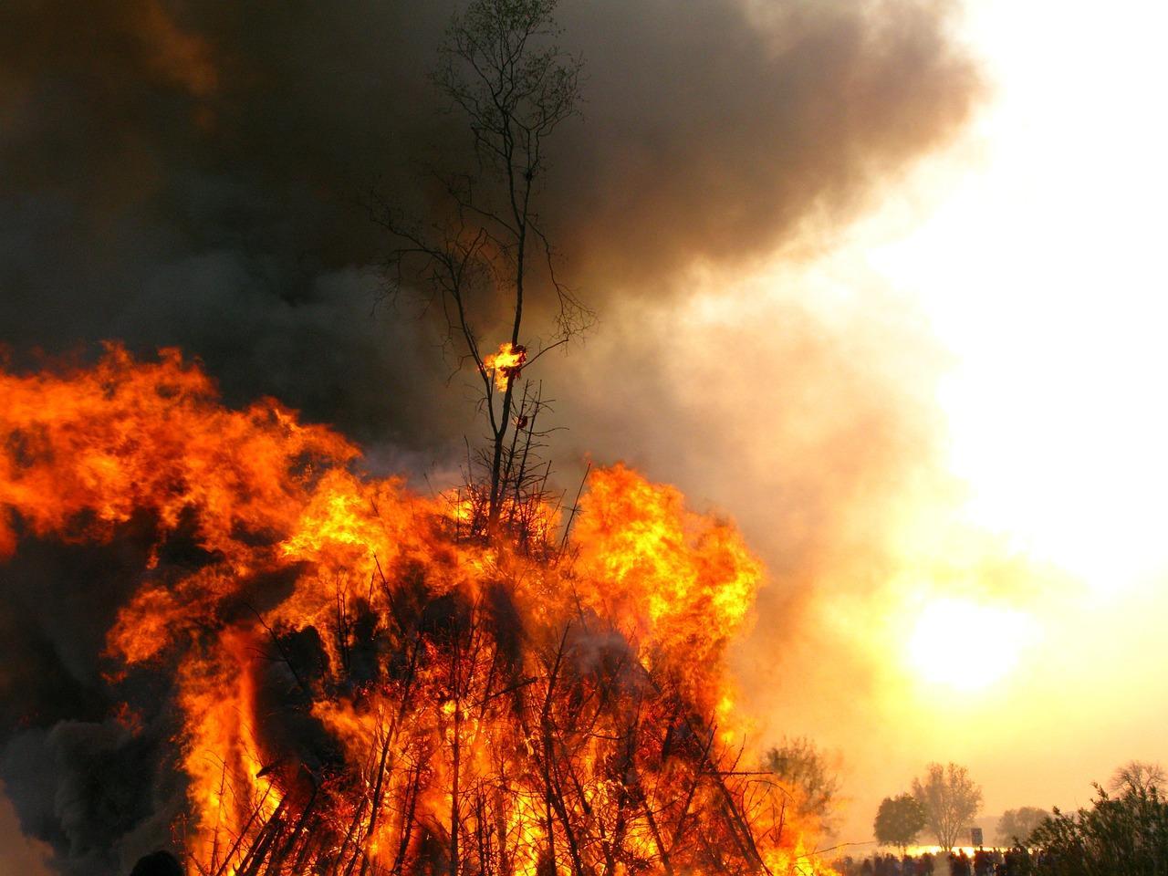 Revel, un feu ravage 5 ha à Saint Ferréol