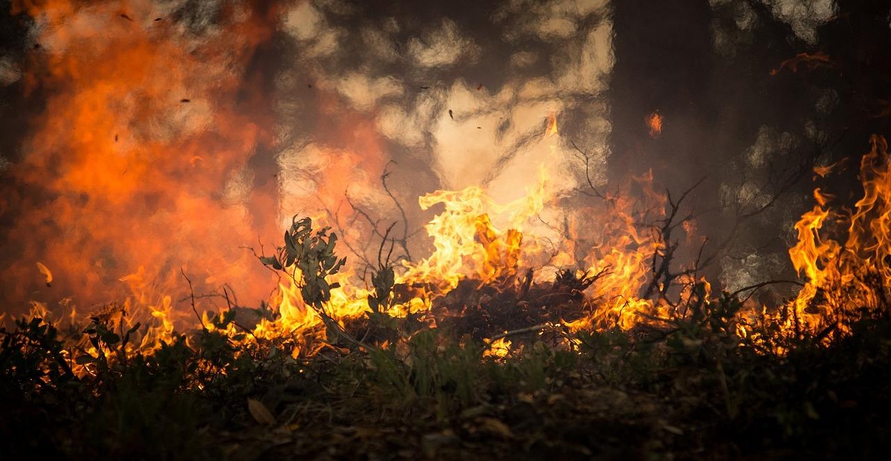 20 ha détruits par un feu à l'est de Toulouse