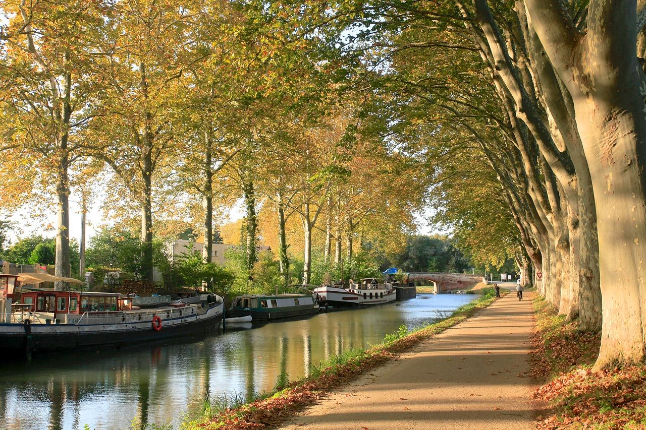 Eté indien à Toulouse ce week end