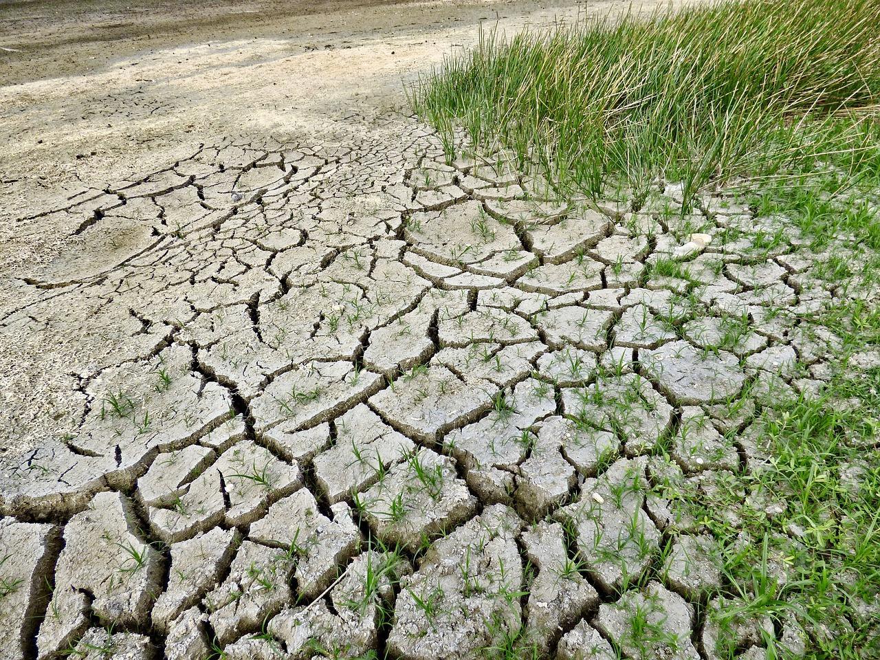 Réchauffement climatique éviter le pire