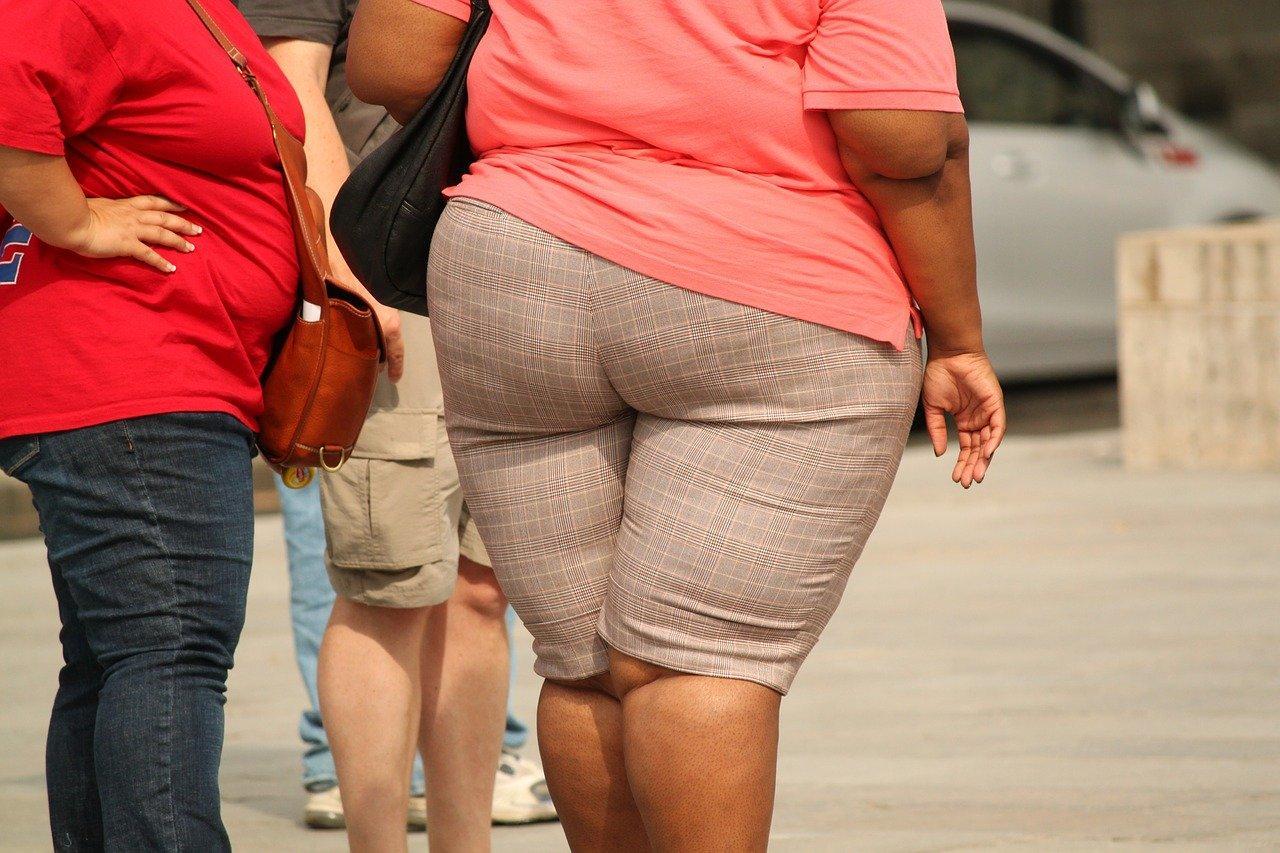 Toulouse, des chercheurs font un lien entre obésité et cancer