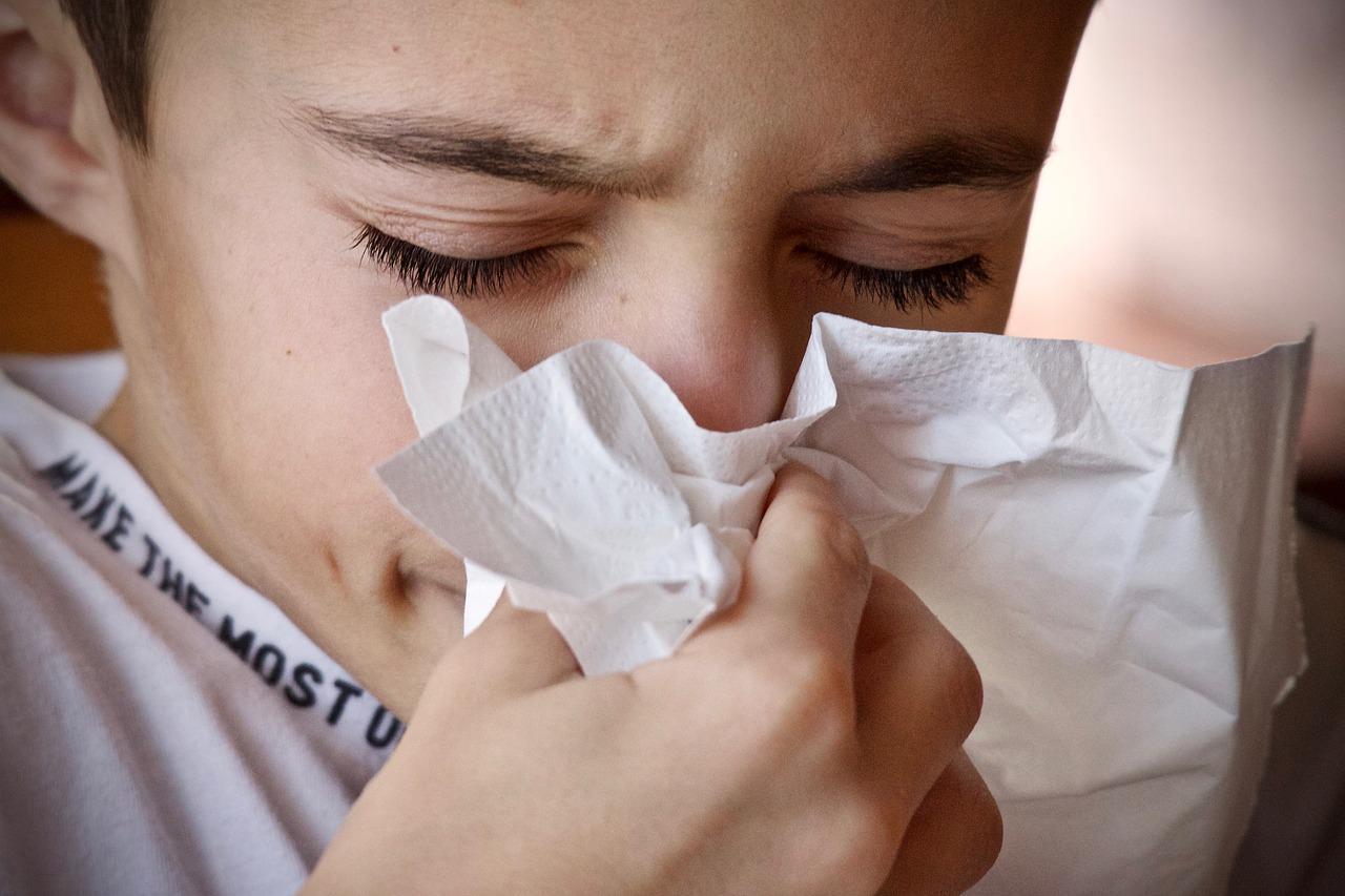 A Toulouse, alerte au pollen