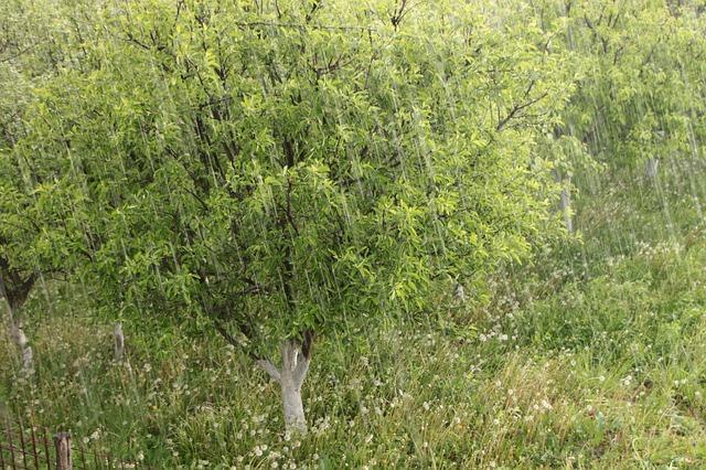 Risque orage grêle mercredi Toulouse