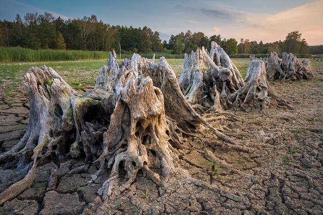 sécheresse septembre Toulouse