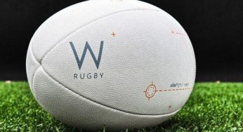 Rugby : Le Biarritz Olympique délocalisé à… Lille ?