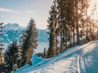 accès plateau de beille fermé Ariège