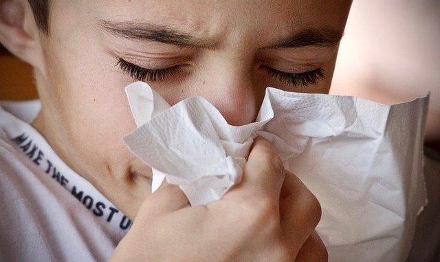 Pollens cyprès alerte Toulouse