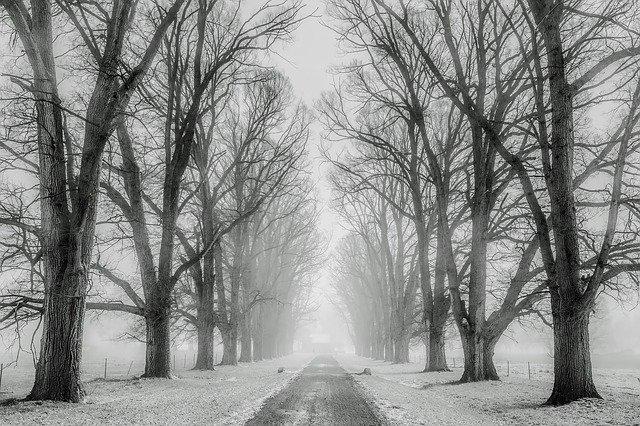 neige paris bretagne nord