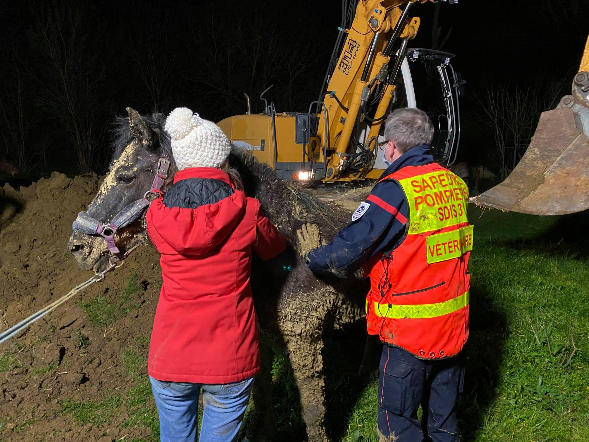 Impressionnant sauvetage d'un cheval au sud est de Toulouse