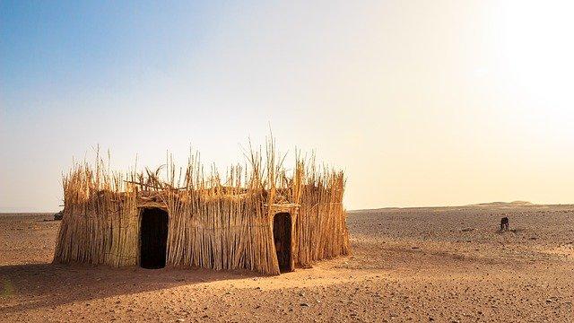 """Arrestation des dirigeants de la transition au Mali """"une tentative de coup de force"""""""